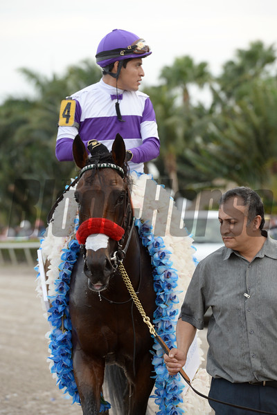 Nyquist wins the 2016 Florida Derby<br /> Coglianese Photos/Leslie Martin