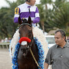 Nyquist wins the 2016 Florida Derby<br /> Coglianese Photos/Leslie Martin