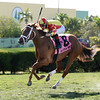 Isabella Sings wins the 2016 My Charmer<br /> Coglianese Photos/Kenny Martin