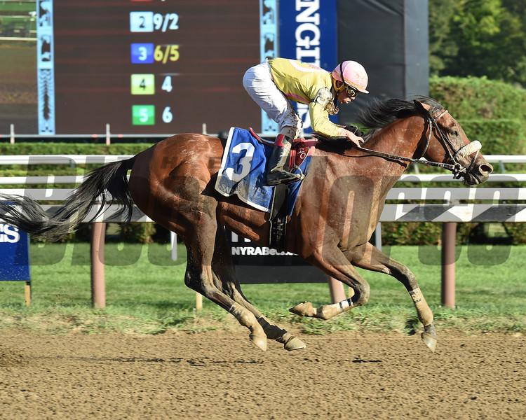 Royal Posse wins the 2016 Evan Shipman Stakes.<br /> Coglianese Photos