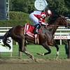 Songbird wins the 2016 Coaching Club American Oaks.<br /> Coglianese Photos/Lauren King