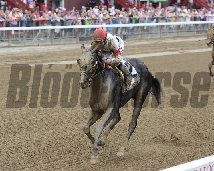 Stallwalkin' Dude wins the 2016 Tale of the Cat Stakes.<br /> Coglianese Photos/Jamie Coulter