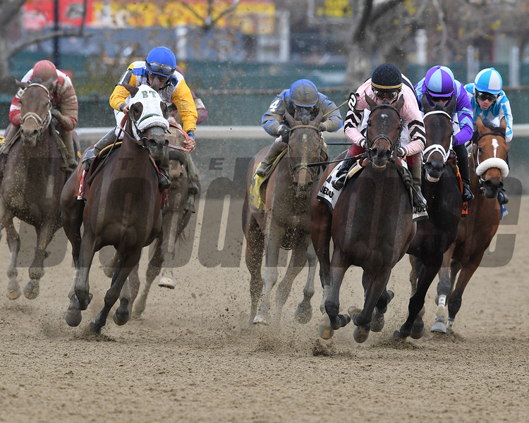 Verve's Tale wins the 2016 Comely Stakes<br /> Coglianese Photos/Robert Mauhar