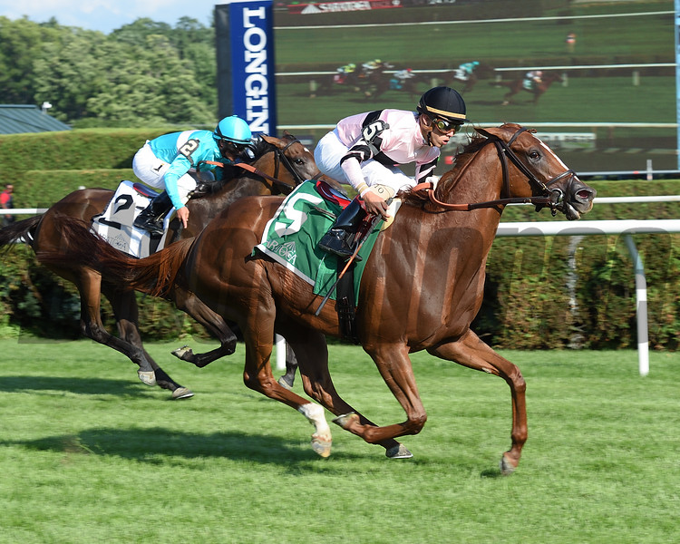 Ancient Secret wins the 2016 Lake George Stakes.<br /> Coglianese Photos