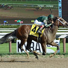 Sweet Loretta wins the 2016 Schuylerville.<br /> Coglianese Photos/Lauren King