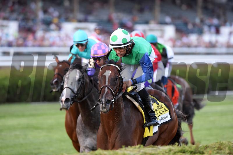 Lady Lara wins the 2016 Fasig-Tipton De La Rose Stakes.<br /> Coglianese Photos