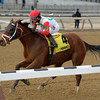 Send It In wins the 2016 Alex M. Robb Stakes<br /> Coglianese Photos/Joe Labozzetta