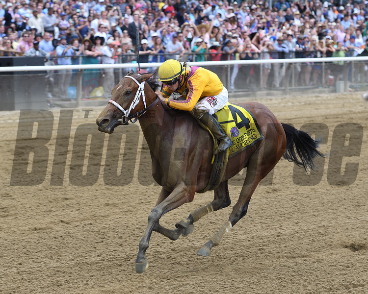 Cavorting wins the 2016 Ogden Phipps Stakes. <br /> Coglianese Photos/Chelsea Durand