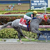 Delta Bluesman wins the 2016 Smile Sprint Stakes.<br /> Coglianese Photos/Leslie Martin