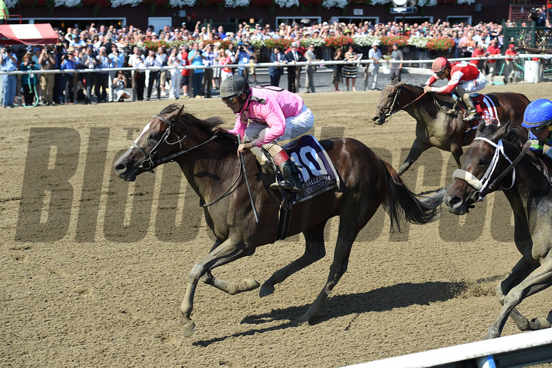 Haveyougoneaway wins the 2016 Ballerina Stakes.<br /> Coglianese Photos/Chelsea Durand