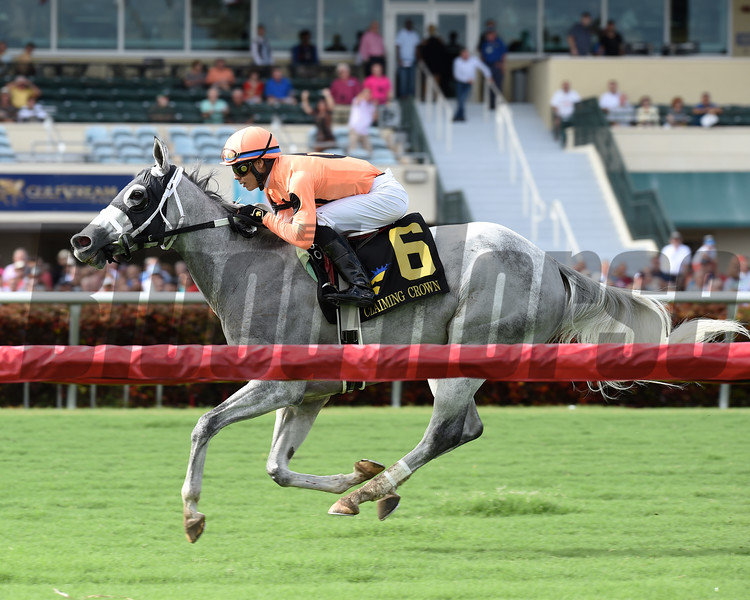 Spectacular Me wins the 2016 Claiming Crown Distaff Dash<br /> Coglianese Photos/Lauren King