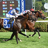 Holding Gold wins the Quick Call Stakes at Saratoga Aug. 4, 2016.<br /> Coglianese Photos