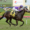 Josdesanimaux wins the 2016 Panama City Stakes<br /> Coglianese Photos/Leslie Martin
