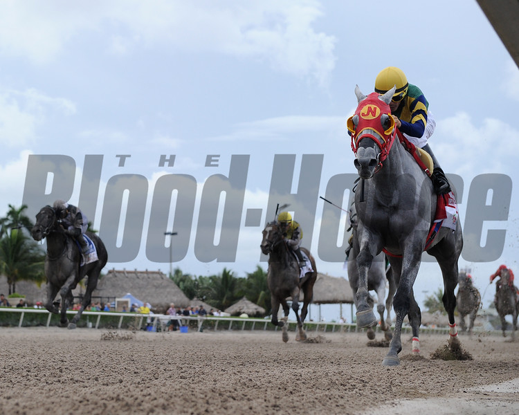Delta Bluesman wins the 2016 Smile Sprint Stakes.<br /> Coglianese Photos