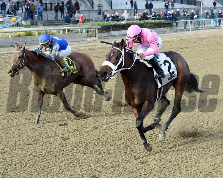 Miss Sky Warrior wins the 2016 Demoiselle<br /> Coglianese Photos/Chelsea Durand