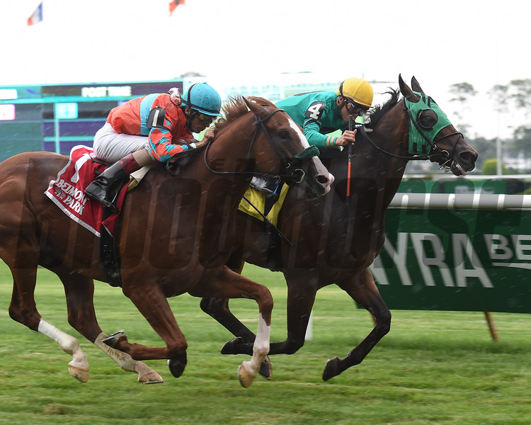 King Kreesa wins the 2016 Forbidden Apple Stakes.<br /> Coglianese Photos/Chelsea Durand