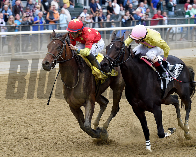 Yellow Agate wins the 2016 Frizette<br /> Coglianese Photos/Chelsea Durand