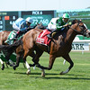Cloud Control wins the New York Stallion Stakes June 26, 2016.<br /> Coglianese Photos