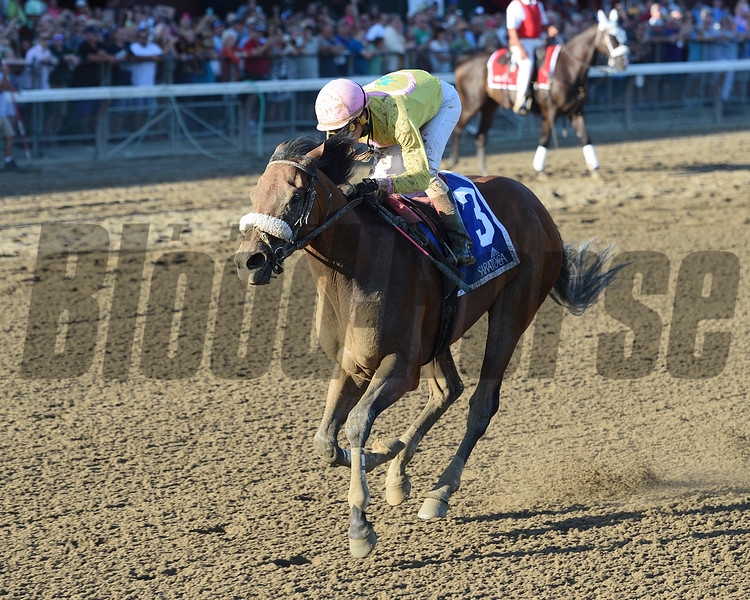 Royal Posse wins the 2016 Evan Shipman Stakes.<br /> Coglianese Photos/Chelsea Durand