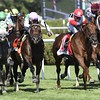 Shining Copper wins the 2016 Lure Stakes.<br /> Skip Dickstein Photo