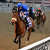 Filibustin wins the 2016 Key Cents Stakes<br /> Coglianese Photos/Joe Labozzetta