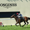 Qemah wins the 2016 Coronation Stakes at Royal Ascot on June 17, 2016.<br /> Mathea Kelley Photo