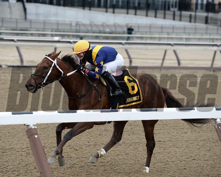 Constellation wins the Ruthless Stakes.<br /> Coglianese Photos/Joe Labozzetta