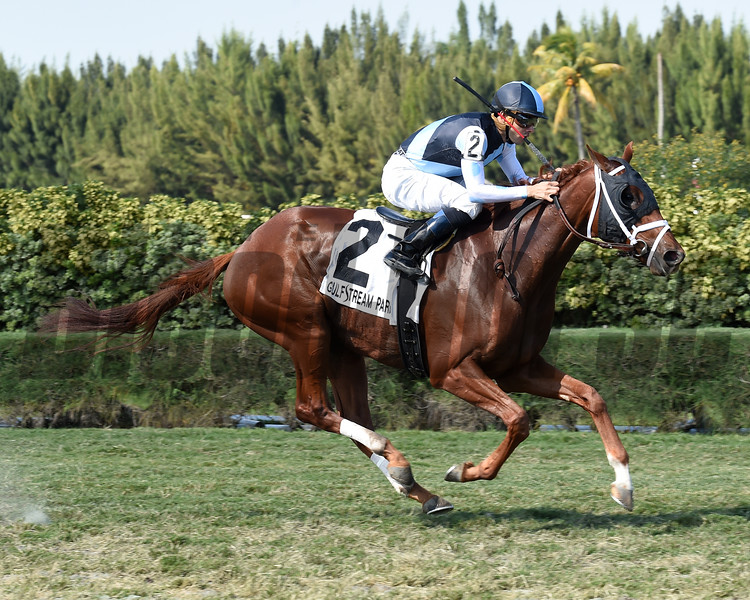 Squadron wins the 2016 Juvenile Turf Stakes<br /> Coglianese Photos/Leslie Martin