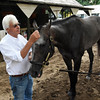 Trainer Bob Baffert has a quiet moment with Travers Stakes winner Arrogate Sunday morning in the barn area at the Saratoga Race Course August 28, 2016 in Saratoga Springs, N.Y.    (Skip Dickstein