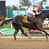 Stallwalkin' Dude wins the 2016 Bold Ruler<br /> Coglianese Photos