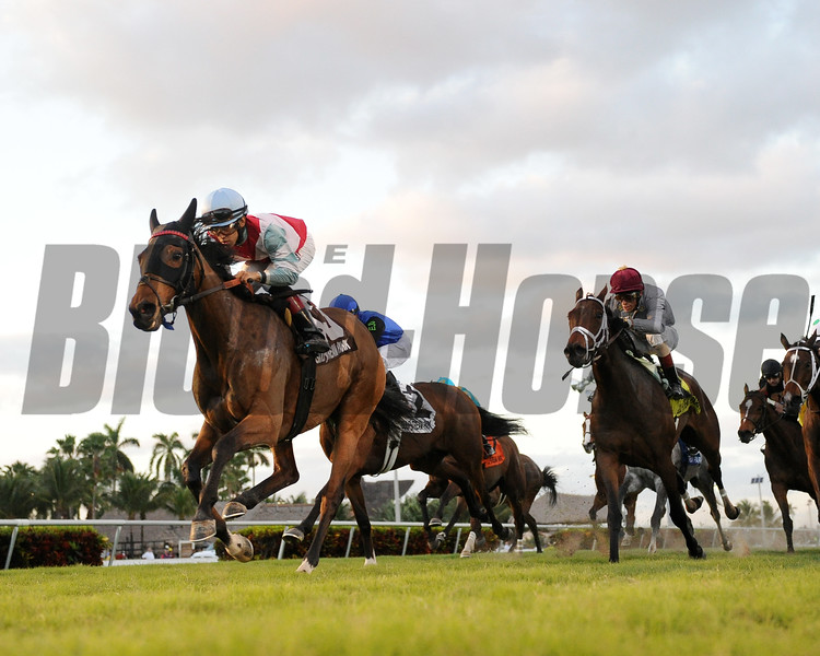Ultra Brat wins the 2016 Tropical Park Oaks<br /> Coglianese Photos/Leslie Martin