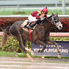 Tapwrit wins the 2016 Pulpit Stakes<br /> Coglianese Photos/Lauren King