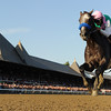 Arrogate wins the 2016 Travers.<br /> Coglianese Photos