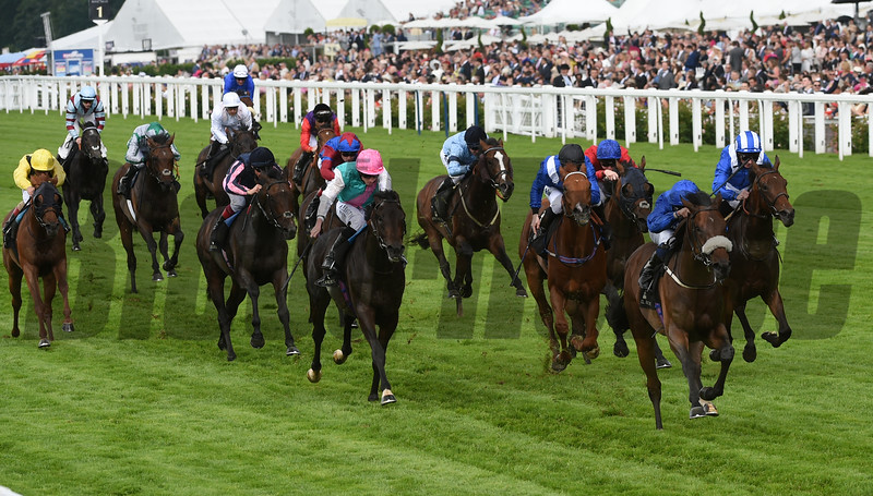 Ribchester (IRE) wins the Jersey Stakes at Royal Ascot June 15, 2016<br /> Mathea Kelley Photo