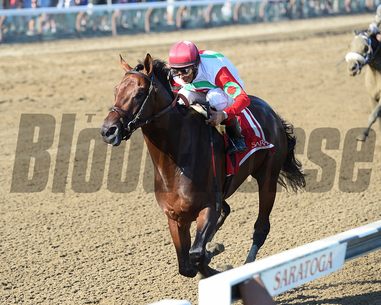 Connect wins the 2016 Curlin Stakes.<br /> Coglianese Photos/Chelsea Durand