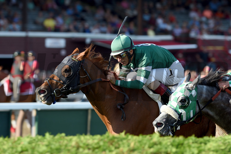 Ring Weekend wins the Bernard Baruch Stakes at Saratoga Sept. 5, 2016.<br /> Coglianese Photos/Chelsea Durand