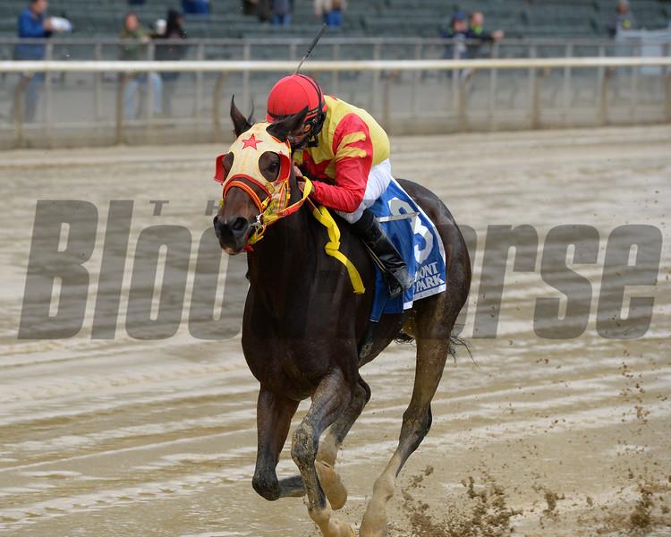 Breakin the Fever wins the 2016 Hudson Handicap<br /> Coglianese Photos/Joe Labozzetta