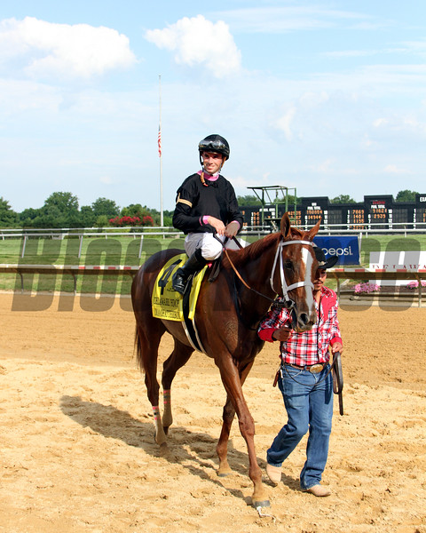 I'm a Chatterbox Delaware Handicap Chad B. Harmon