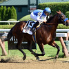 Drefong wins the 2016 King's Bishop  <br /> Coglianese Photos