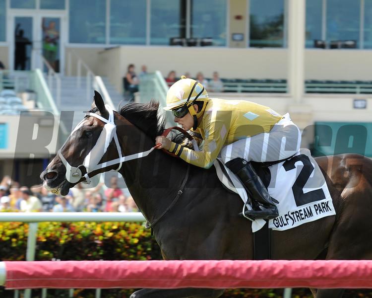 Diamond Bachelor wins the 2016 Mr. Steele Stakes.<br /> Coglianese Photos/Kenny Martin