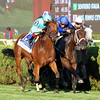 Lady Eli Ballston Spa Saratoga Chad B. Harmon