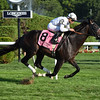 Tourist wins the 2016 Fourstardave.<br /> Coglianese Photos/Susie Raisher