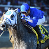 Frosted wins the 2016 Whitney.<br /> Coglianese Photos/Adam Mooshian