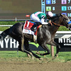 Arrogate wins the 2016 Travers.<br /> Coglianese Photos/Chris Rahayel