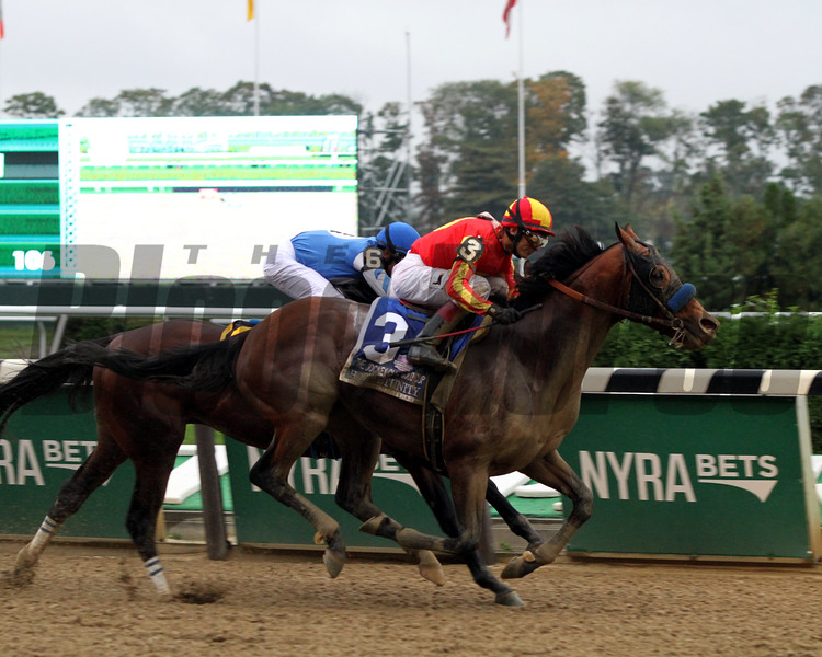 Hoppertunity Jockey Club Gold Cup Belmont Park Chad B. Harmon