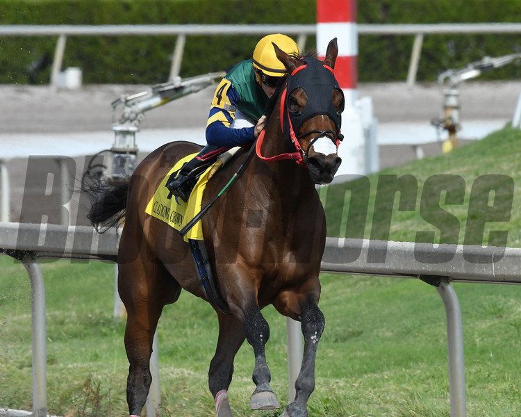 Shaft of Light wins the 2016 Claiming Crown Rapid Transit<br /> Coglianese Photos/Andie Biancone
