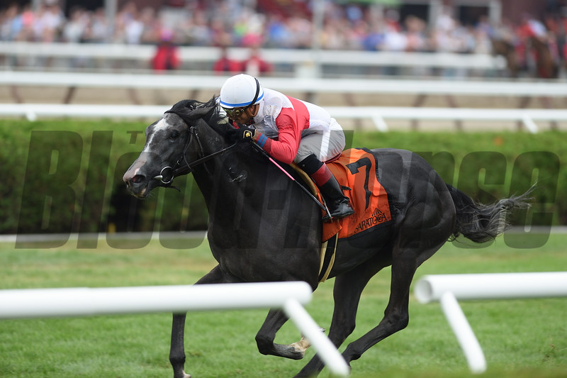 On Leave wins the 2016 Riskaverse Stakes.<br /> Coglianese Photos/Chelsea Durand