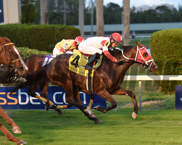 Keystoneforvictory wins the 2016 Claiming Crown Emerald<br /> Coglianese Photos/Leslie Martin