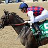 Carina Mia Eight Belles Churchill Downs Chad B. Harmon