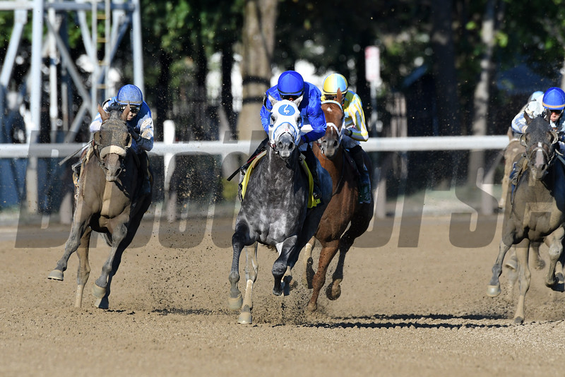 Frosted wins the 2016 Whitney.<br /> Coglianese Photos/Arianna Spadoni